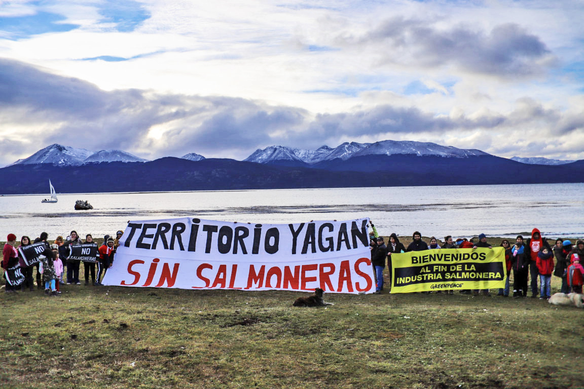 Tierra del Fuego hace punta en el mundo al prohibir cría de salmones dentro de su ecosistema natural – Diario El Ciudadano y la Región